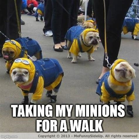 Despicable Me Minion Meme - despicable me 2 minion memes image memes at relatably com