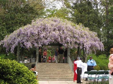 Raleigh Botanical Garden L Jpg