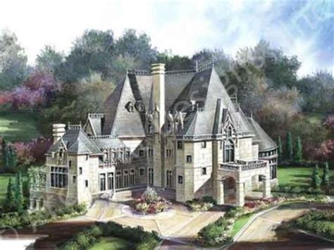 french chateau house plans castle style house plans mini castle house plans castle type house plans mexzhouse com
