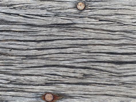 Free Images : tree, branch, grungy, board, wood, vintage