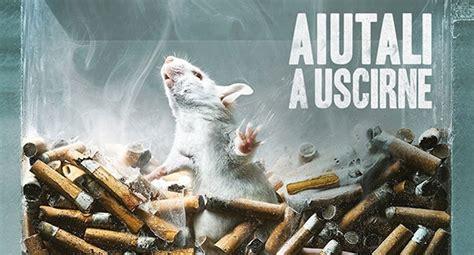 test sugli animali test sugli animali per droga alcol e fumo s 236 ancora per