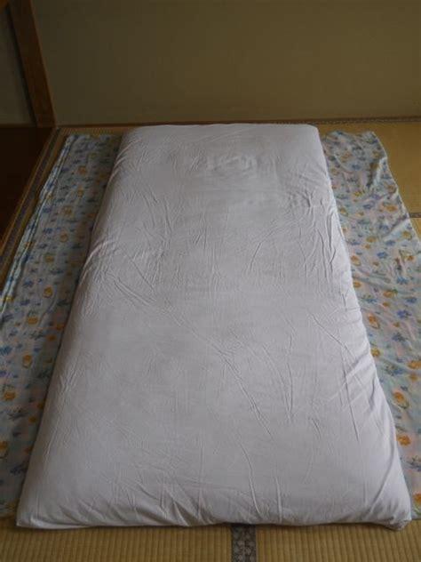 rugs rugs rugs port orange knotted rug area rugs port orange fl