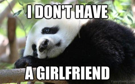 cutest panda memes  ruled  internet viral slacker
