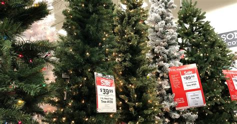 when does costco start selling chriatnas trees trees starting at only 19 99 black friday prices hip2save