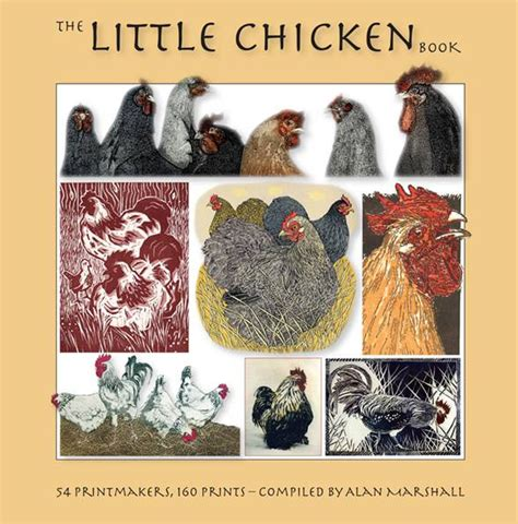 chicken picture book the chicken book the dot gallery