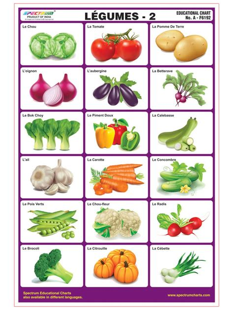 vegetables for vegetables chart for www pixshark images