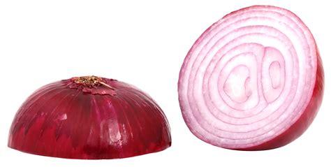 Onion Linksrc | link 15 file onion onion link onion city links related