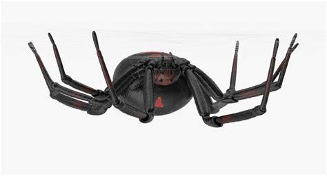 Kaos 4d Umakuka Original Black Widow Spider hanging black widow 3d model