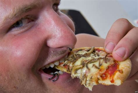 un urges westerners to get over disgust at eating bugs