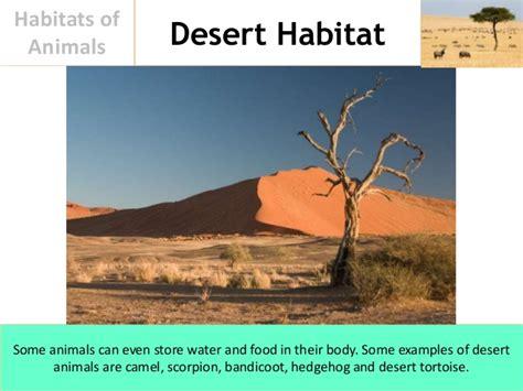 exle of habitat habitats of animals
