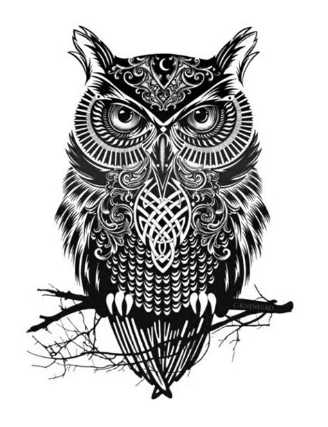 25 beautiful owl tattoo design ideas on pinterest owl