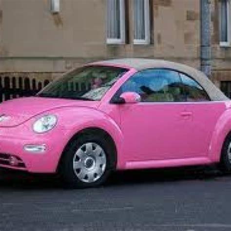 bed bugs in car slug bug car car interior design