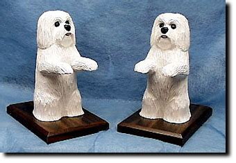 havanese books havanese breed book ends