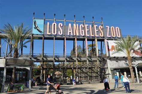Image Gallery Los Angeles Zoo Tickets Discount Tickets To La Zoo Lights Socal Field Trips