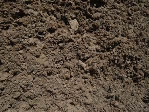 loam topsoil compost haluchs landscaping products