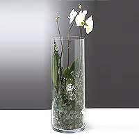 vase en verre droit cylindrique pas cher vases coupelles