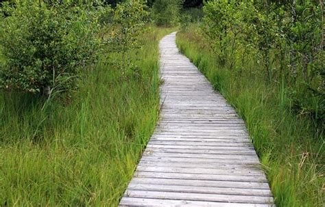 Gartenweg Pflastern Kosten by Gartenwege Anlegen Kosten Siddhimind Info