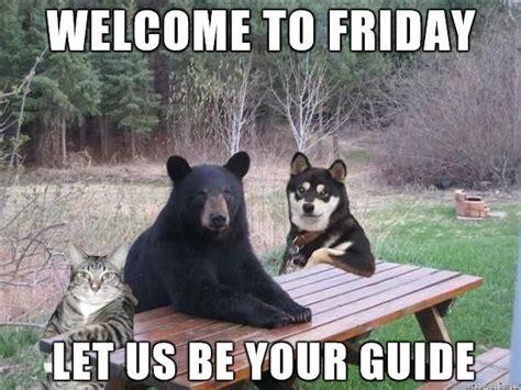 Meme Loftin - funny friday funny memes pinterest
