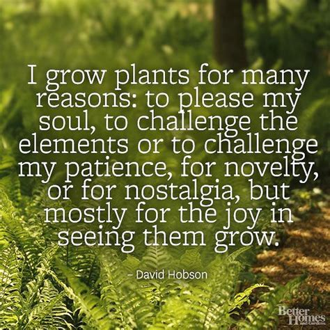 garden quotes gardens nostalgia and quotes about