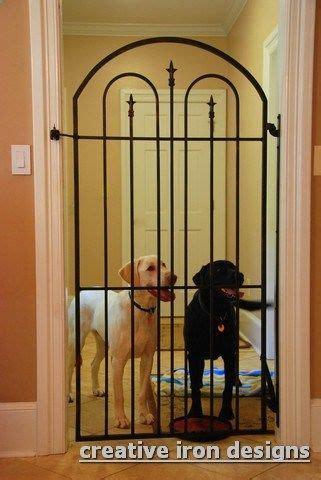 dog house with gate best 25 dog gates ideas on pinterest custom dog gates