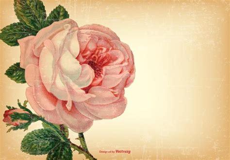 theme line vintage flower free vintage shabby floral background download free vector