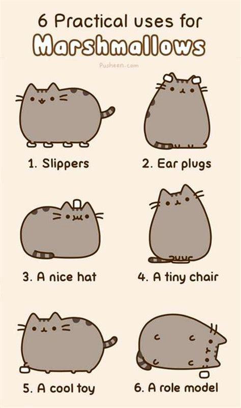 Pusheen Cat Meme - six practical uses for marshmallows pusheen know your meme