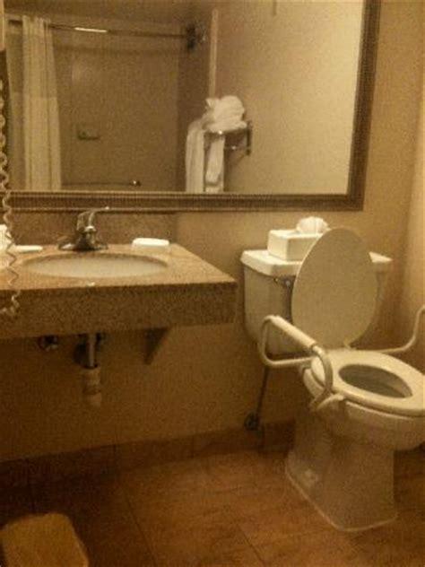 handicap bathroom sink befon for
