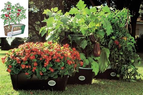 Earth Box Planters by Inside Green Green Solutions Vegetable Gardens To Go