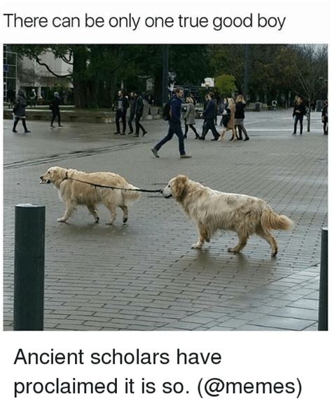 There Can Only Be One Meme - there can be only one true good boy ancient scholars have