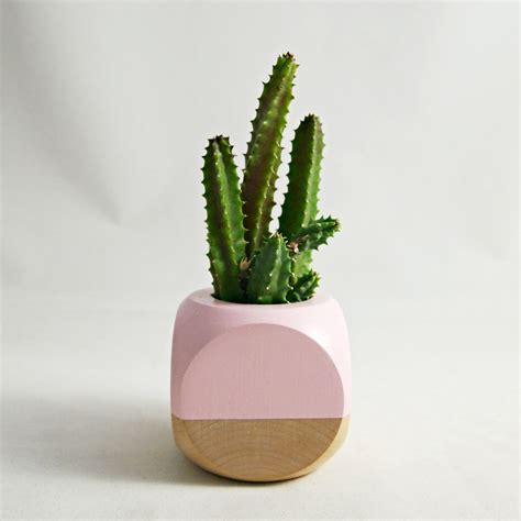 cactus planter mini geometric planter blush wood plant not by seaandasters