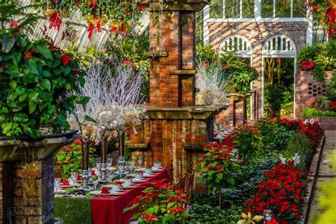 winter flower show  light garden  holiday magic