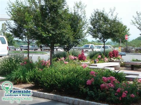 Garden Answer Oregon Parking Lot And Sitting Area Landscaping Ideas From