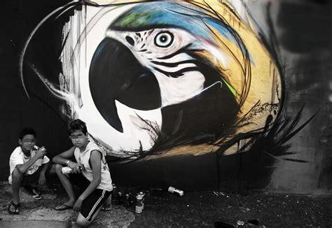 impressive graffiti birds   young brazilian artist