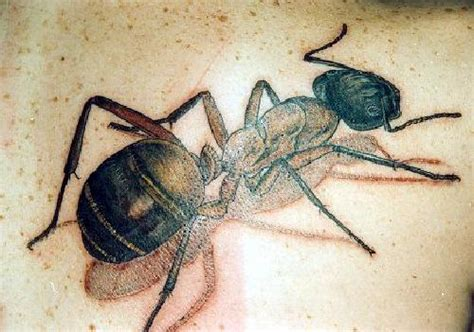 ant tattoo be ant design