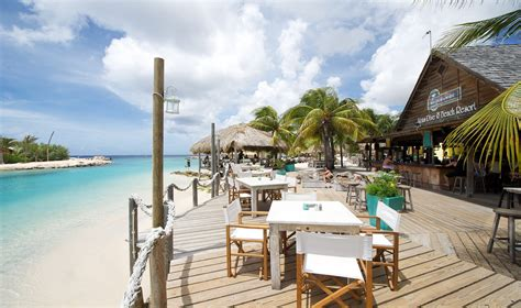 lions dive resort curacao duikvakantie lions dive resort dive and travel