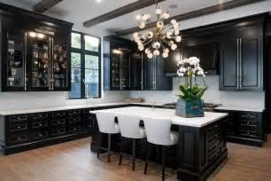 black cabinet kitchens glass front kitchen cabinets with polished brass cremone