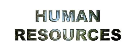 hr consultants human resources advisor answers thinkhr do companies need an hr department quora