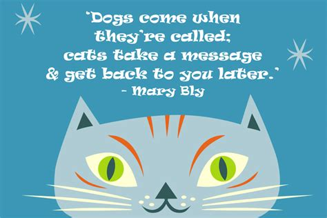 how to to come back when called dogs come when they re called cats take by bly like success