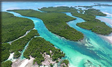 safari speed boat tour key west key west island water tours key west watersports snorkel