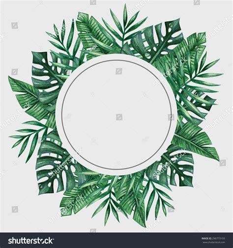 Bando Flower Leaf Blue palm tree leaves frame tropical vectores en stock