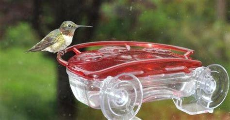 hummingbird nectar recipe from wild birds unlimited