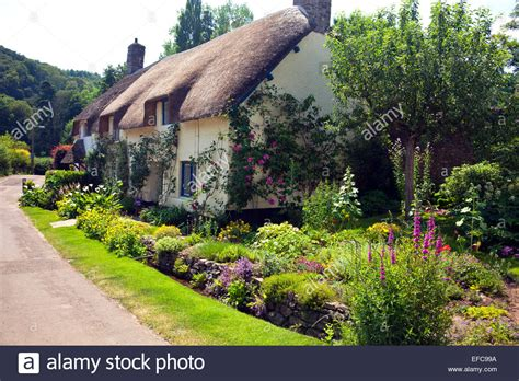 Cottages In Dunster by A Picturesque Thatched Cottage And Garden In Dunster