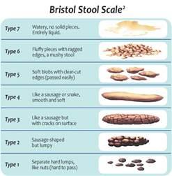 bristol stool scale pdf related keywords bristol stool