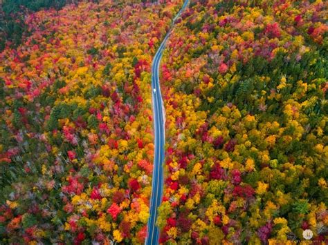 fall colors 2017 fall colors in new hshire today s image earthsky