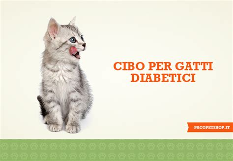 alimenti per cani diabetici cibo per gatti diabetici