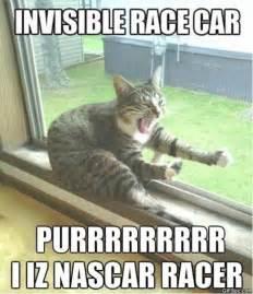 Best Cat Memes - best cat memes 2015 image memes at relatably com