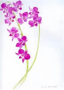 fiori disegnati e colorati immagini tralcio fiori disegnati colorati