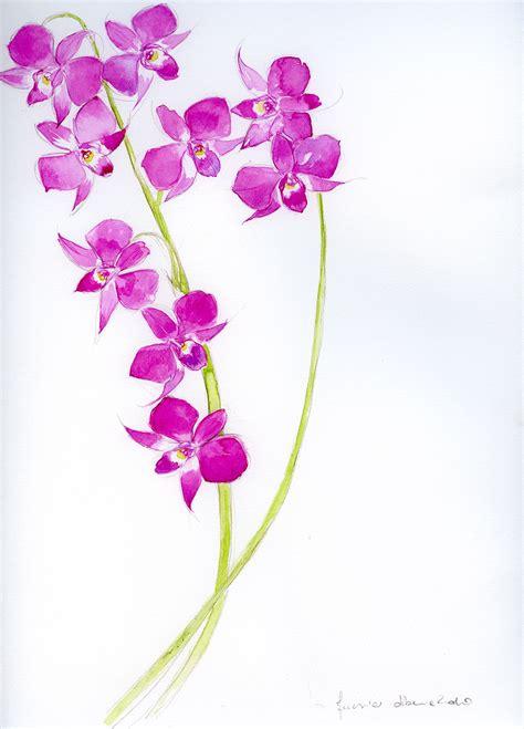 disegni a matita fiori amazing disegni fiori a matita dy49 pineglen
