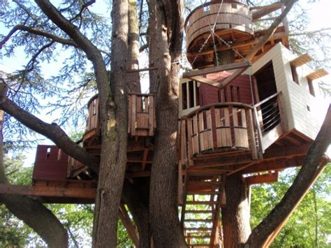Livable Tree House Plans Livable Tree House Plans Numberedtype
