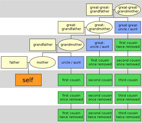 printable family tree with cousins can i marry my cousin s daughter islamicanswers com